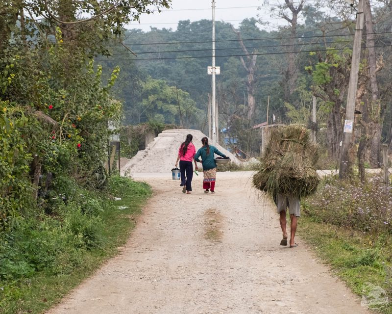 Chitwan village