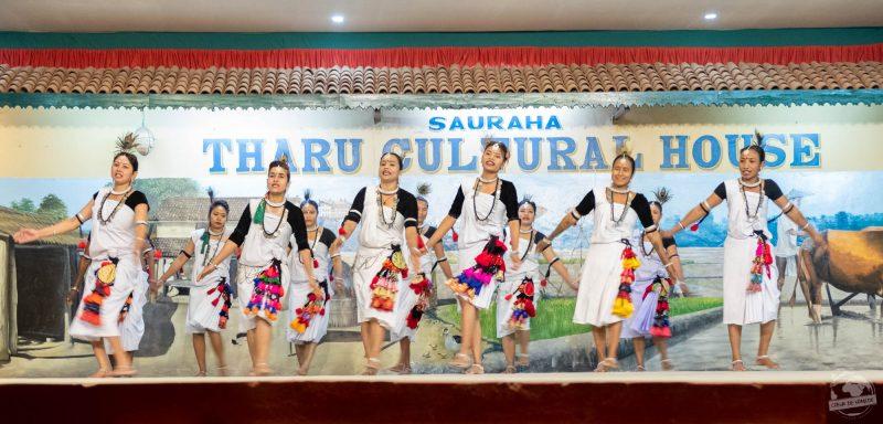 Sauraha Tharu culture house : danses traditionnelles